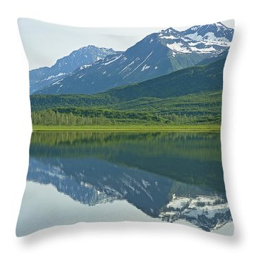 Throw Pillow featuring the photograph Robe Lake by Nick  Boren