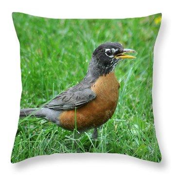 Robin 334 Throw Pillow