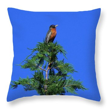 Robin Christmas Tree Topper Throw Pillow