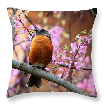 Robin In A Red Bud Tree Throw Pillow by John Freidenberg