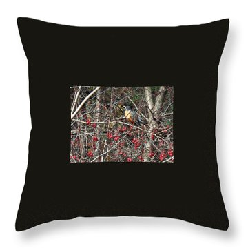 Robin In The Crab Apple Trees Throw Pillow by Joy Nichols