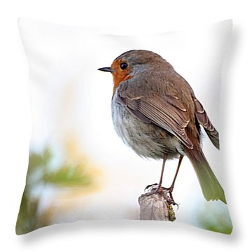 Robin On A Pole Throw Pillow