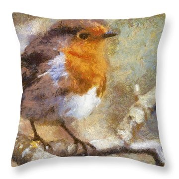 Robin Redbreast Throw Pillow