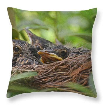 Robins In The Nest Throw Pillow by Debbie Portwood