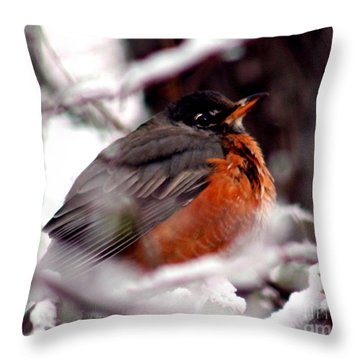 Throw Pillow featuring the photograph Robins' Patience by Lesa Fine