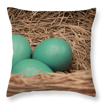 Robins Three Blue Eggs Throw Pillow