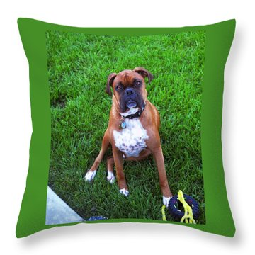 Rocco Throw Pillow