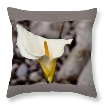 Rock Calla Lily Throw Pillow