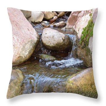 Throw Pillow featuring the photograph Rock Creek by Kerri Mortenson