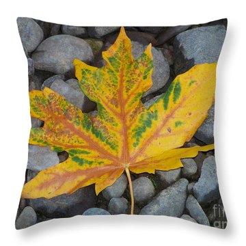 Throw Pillow featuring the photograph Rock Creek Leaf by Chalet Roome-Rigdon