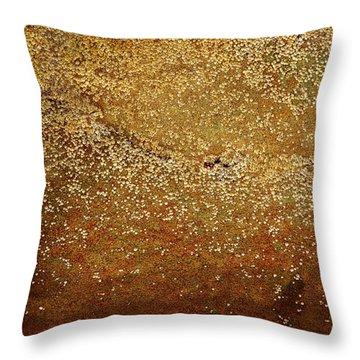 Rock Face - Seaside Abstract Throw Pillow by Aidan Moran
