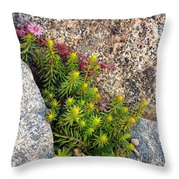 Throw Pillow featuring the photograph Rock Flower by Meghan at FireBonnet Art