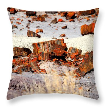 Rock Garden Throw Pillow