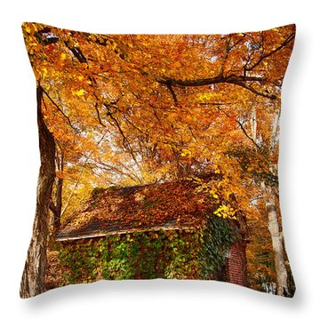 Throw Pillow featuring the photograph Rock Of Ages Surrouded By Color by Jeff Folger