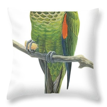 Rock Parakeet Throw Pillow by Anonymous