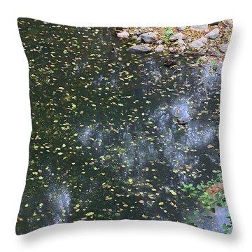 Throw Pillow featuring the photograph Rock Reflection In Santa Anita Wash by Viktor Savchenko
