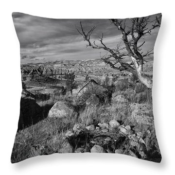 Rock Ring In Wind River Country Throw Pillow