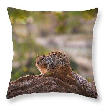 Rock Squirrel In Zion Throw Pillow by Robert Bales