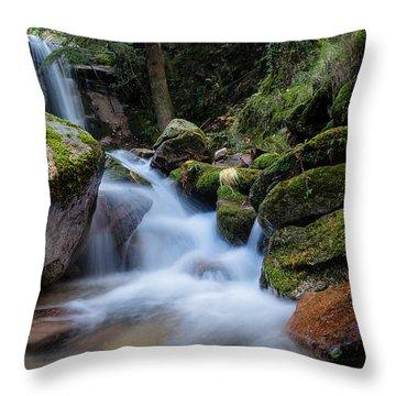 Rock To Rock Down Throw Pillow by Edgar Laureano