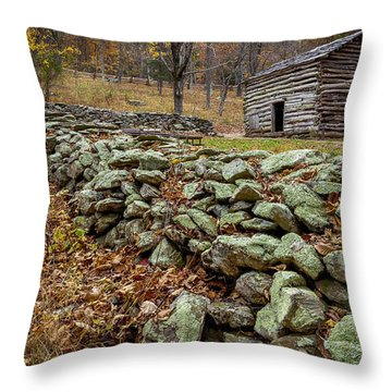 Rock Wall Throw Pillow by David Cote