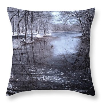 Rockefeller Swan Lake Throw Pillow by Dave Beckerman