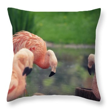 Rocking Pink Throw Pillow by Maria Angelica Maira