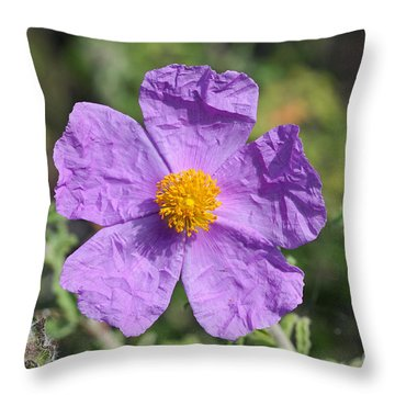 Throw Pillow featuring the photograph Rockrose Flower by George Atsametakis