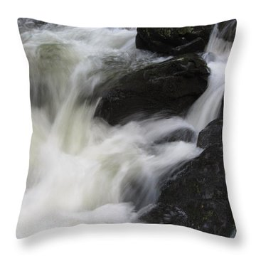 Throw Pillow featuring the photograph Rocks At Bushkill by Richard Reeve