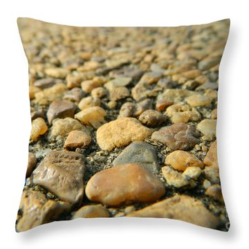 Rocks On My Path Throw Pillow by Andrea Anderegg