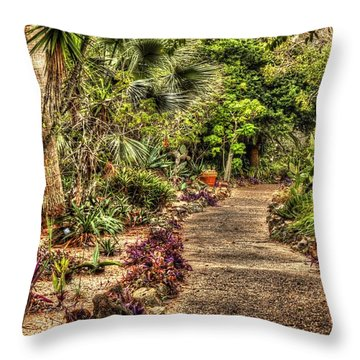 Rocks On Road Throw Pillow