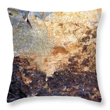 Rockscape 2 Throw Pillow by Linda Bailey