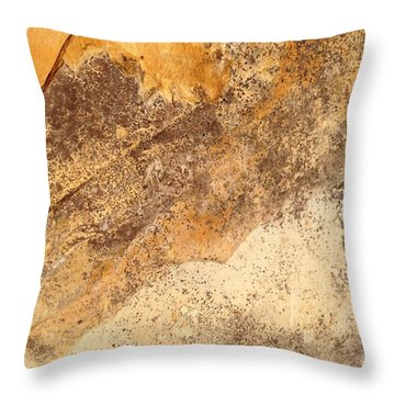 Rockscape 7 Throw Pillow by Linda Bailey