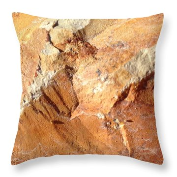 Rockscape 8 Throw Pillow by Linda Bailey