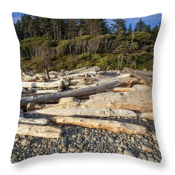 Throw Pillow featuring the photograph Rocky Beach And Driftwood by Bryan Mullennix