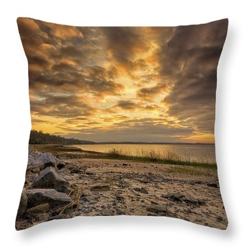 Rocky Beach Throw Pillow by Phill Doherty