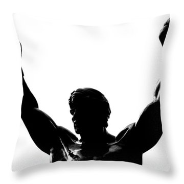 Rocky Throw Pillow by Benjamin Yeager