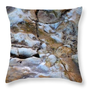 Rocky Throw Pillow by Heather Allen