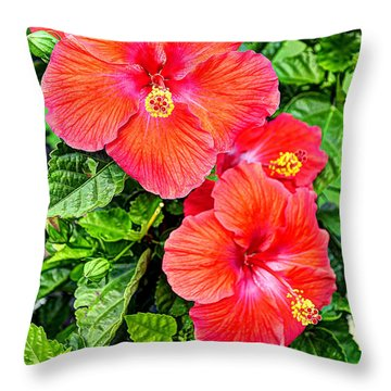 Rocky Hill Hibiscus Throw Pillow