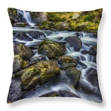 Rocky Ice Water Throw Pillow by Ian Mitchell