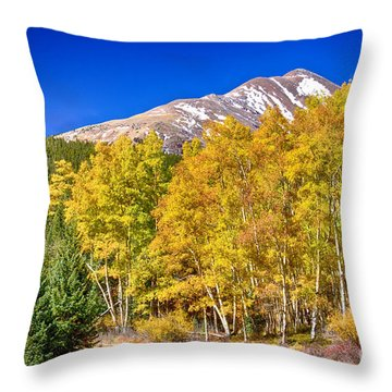Rocky Mountain Autumn Bonanza Throw Pillow by James BO  Insogna