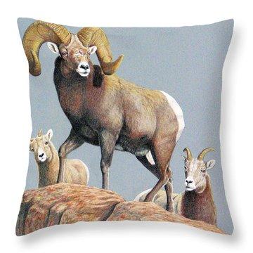Rocky Mountain Ram Ewe And Lamb Throw Pillow