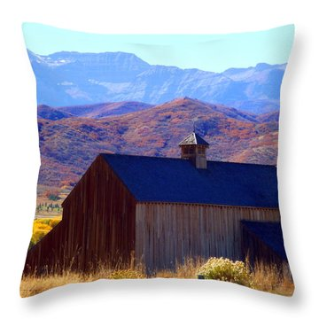 Throw Pillow featuring the photograph Rocky Mountain Retreat by Jackie Carpenter