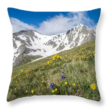 Rocky Mountain Springtime Throw Pillow