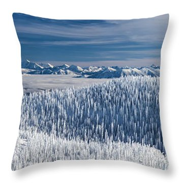 Throw Pillow featuring the photograph Rocky Mountain Winter by Aaron Aldrich