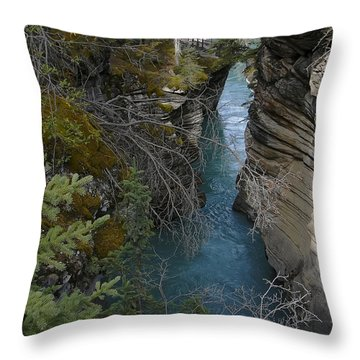 Rocky Mountain Wonder Throw Pillow