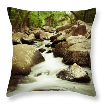 Rocky Stream Throw Pillow