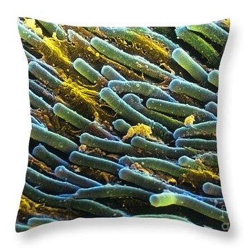 Rod Cells Throw Pillow