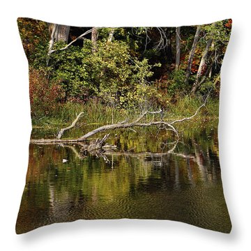 Rogue River Reflections Throw Pillow
