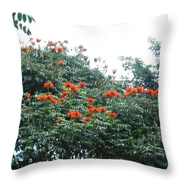 Rojito Throw Pillow