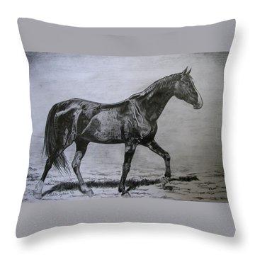 Roko Throw Pillow by Melita Safran